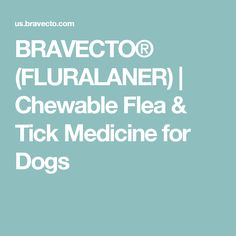 BRAVECTO® (FLURALANER) | Chewable Flea & Tick Medicine for Dogs