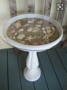 Great way to display seashells