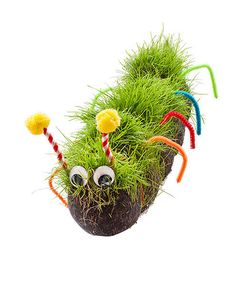 How to make a hairy caterpillar: Entice your kids outdoors by helping them grow their own furry pet caterpillar. It's a cinch to make! Simply fill a stocking with grass seeds, then it needs only a daily watering and a spot where it can bask in the sun. In about a week, your kids will delight in witnessing their new pal sprout a grassy coat, and enjoy trimming and styling it, too. Make just one or create a whole furry family!