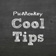 Picmonkey Tips