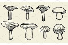 mushrooms mushroom draw drawn hand drawing drawings creativemarket stencils face easy tattoos vector doodle background hands videoartshop pierced linocut basics