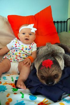 """The sloth and baby have been growing up together, taking walks together, and working alongside mommy as I write my books and travel to schools."" 