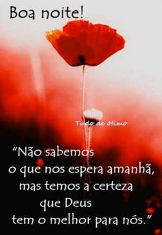 76 frases boa noite com amor, frases de boa noite com amor 145 Videos Funny, Love Life, Diy Projects, Inspirational Quotes, Thoughts, Humor, Motivation, Memes, Pasta
