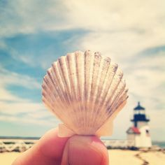 Sea shells by the seashore. Scallop by the lighthouse. For the BEST of summer FOLLOW http://www.pinterest.com/happygolicky/summer-style-jewelry-clothing-swimsuits-accessorie/