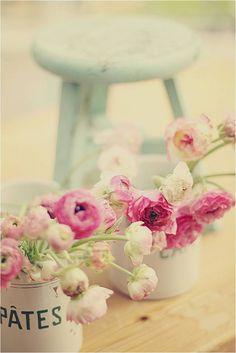 Pretty flowers pastel colores цветы, букет цветов и декор. Deco Pastel, Deco Floral, Shabby Chic, Deco Nature, Rosa Rose, Colorful Roses, Pastel Flowers, Draw Flowers, Bouquet Flowers