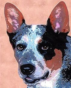 Australian Cattle Dog Blue Heeler art by AnimalArtIncognito Baby Dogs, Dogs And Puppies, Doggies, Bananas For Dogs, Large Dog Breeds, Dog Rules, Animal Sketches, Dog Paintings, Australian Cattle Dog