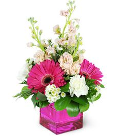 Show your devotion with our sweet-and-spicy pink arrangement! Delicate  pink stocks add a touch of sweetness to fuchsia Gerbera daisies in a hot  pink vase! It's the perfect way to show her all of things you love  about her.Fuchsia Gerbera daisies, carnations, stocks, asters, and more are expertly arranged to delight your Valentine!