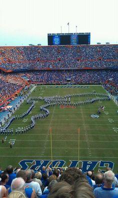 Florida Gator Football in Gainesville. Go Gators. Fla Gators, Florida Gators Football, Sec Football, Football Stadiums, College Football, Football Season, Pittsburgh Steelers, Dallas Cowboys, Uf Gator