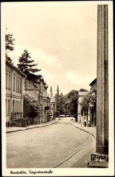 Ansichtskarte / Postkarte Neustrelitz Mecklenburg Vorp., Tiergartenstraße