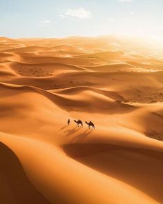 "rosiesdreams: ""So insignificant in the Sahara Desert, Morocco. by © Michael Gray "" Drone Photography, Landscape Photography, Adventure Photography, Chefchaouen Morocco, Marrakech Morocco, Desert Sahara, Deserts Of The World, Desert Life, Destinations"