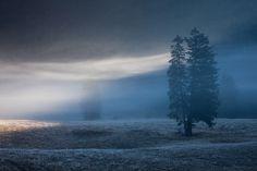 Songes d'automne : quand la lumière déchire la brume (Sandrine et Matt Booth)