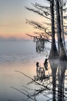 ✯ Southern Sunrise Reflections