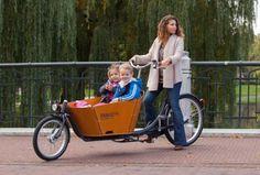 Moderne E-Bikes im Fokus