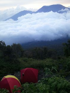 The first post, beautiful scenery in front of the tent.merapi,padang - indonesia.