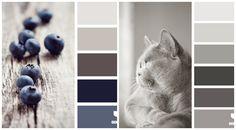 Couleur pour cuisine tendance – 105 idées de peinture murale et couleur façade