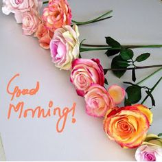 And wish them a good morning wishes. We have brought for you, Good Morning Beautiful Images and Messages for Love. Good Morning Coffee, Good Morning Flowers, Good Morning Sunshine, Good Morning Picture, Good Morning Love, Morning Pictures, Good Morning Wishes, Morning Blessings, Good Night Greetings