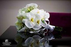 buque de noivas de orquideas brancas