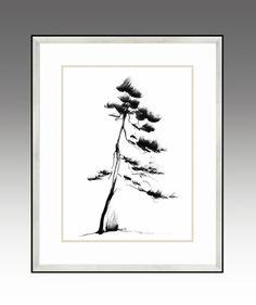 Pine. Pines Series (Option 1).