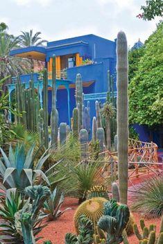 Love this desert garden.The Majorelle Garden is a twelve-acre botanical garden and artist's landscape garden in Marrakech, Morocco. - Gardening For Life