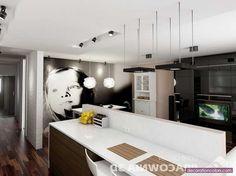Apartment Kitchen Design And Style Concepts - http://www.decorationcolors.com/color-schemes/apartment-kitchen-design-and-style-concepts.html