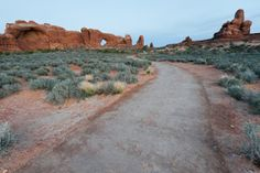 Children will love day hike on Windows Trails in Arches National Park