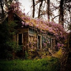 Abandoned house in Charleston, South Carolina, photo via paula.