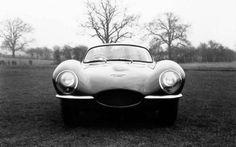 The Jaguar XKSS Classic European Cars, Classic Cars, Speed Form, Steve Mcqueen, Fast Cars, Jaguar, Racing, Vehicles, Men's Style