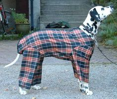 Dog Clothing DIY doggie raincoat with legs - yes, it looks ridiculous, but until you have walked your long-haired dog along a dirt and gravel country road, you have no idea how neccessary the legs are. Dog Sweater Pattern, Crochet Dog Sweater, Pajama Pattern, Dog Pattern, Raincoat Outfit, Dog Raincoat, Dog Clothes Patterns, Coat Patterns, Outfit Vintage
