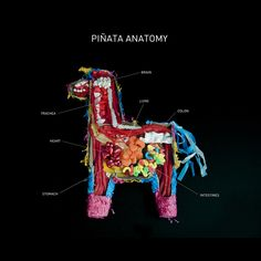 Carmichael Collective to the rescue with this rare glimpse at the anatomy of a piñata. {spotted on Foodiggity}