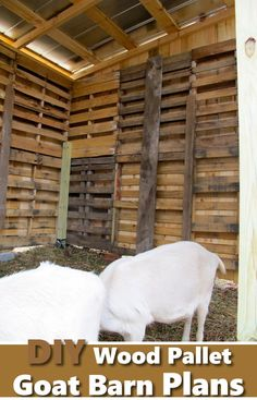 DIY Wood Pallet Goat Barn - great way to repupose wood pallets #diy #woodpallets #goats