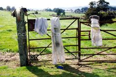Beekeeper's Clothes Hanging on Gate A Beekeeper's Clothes Hang on Gate Airing in the Breeze in a Landscape. Absence Stock Photo Video Image, Bee Keeping, Feature Film, Photo Illustration, Image Now, Agriculture, Royalty Free Images, Breeze, Gate