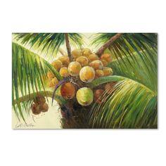 Found it at Wayfair - 'Coconut Palm II' by Victor Giton Painting Print on Canvas
