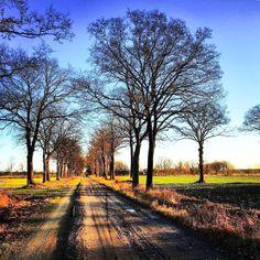 Country road (Rutbeek, Enschede, Netherlands) by AllardStrijker (@allardstrijker) on Instagram