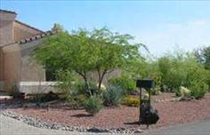 desert planted yards - Bing Images