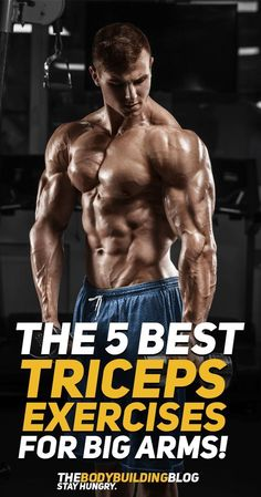 d867476c3 here is 5 best tricep workout to build you arm triceps like biceps Gain  Muscle,