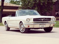 1967 mustang (originally spotted by @Shirlenecuo839 )