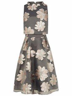 Coast Shola Metallic Grey Dress