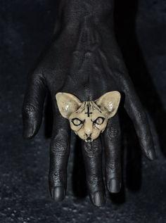 Sphynx cat ring Jewelry with cat Cat jewelry Cat ring