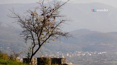 """Albania Lezha Originally an Illyrian settlement, the city dates back to at least 8th century BC. Around 385 BC, a Greek colony was found by Dionysius I of Syracuse by the name of Lissos, as part of a strategy by Dionysius to secure Syracusan trade routes along the Adriatic. Diodorus calls it a polis. The city was separated into sectors by diateichisma, """"cross-wall"""" and there are elements of Syracusan architecture in part of its walls."""