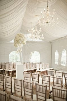 Like the chandeliers, but maybe too white?