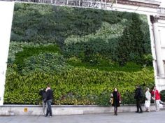"""London's National Gallery installed a vertical garden made up of 8,000 plants (26 different varieties), based on Vincent van Gogh's 1889 painting, A Wheatfield with Cypresses (pictured, bottom). The living installation is a beautiful take on the artist's """"canvas of cypresses with some ears of wheat, some poppies, [and] a blue sky like a piece of Scotch plaid."""""""