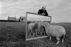 Ian Wilmut con una alegoría de la clonación en su finca de Escocia. / rami benali (corbis)