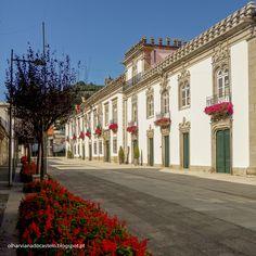 Olhar Viana do Castelo: Viana do Castelo florida Rue fleurie de Viana do Castelo