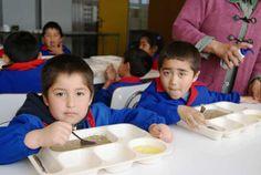 Educación alimentaria nutricional en escolares -  La infanciaes la etapa en la quese establecen los hábitos alimentarios, que después nos acompañaran el resto de nuestra vida, determinando así nuestro estado nutricional y salud. Por ello, es importante cualquier esfuerzo encaminado a instaurar y/o mejorar los hábitos de alimentación durante es...