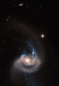 The NASA/ESA Hubble Space Telescope has captured this striking view of spiral galaxy NGC 7714. This galaxy has drifted too close to another nearby galaxy and the dramatic interaction has twisted its spiral arms out of shape, dragged streams of material out into space, and triggered bright bursts of star formation.