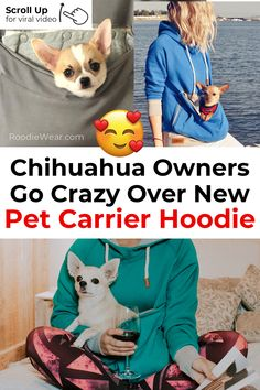 Roodie - Pet Carrier Hoodies - OMG! SO CUTE! I'll take my Chihuahua everywhere! www.roodiewear.com Chihuahua Facts, Baby Chihuahua, Baby Corner, Pet Furniture, Pet Carriers, Animal Crossing, Small Dogs, Dog Days, Fur Babies