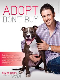 Chase Utley Hits a Grand Slam for Animals.  I agree this is a personal decision, but for me, I would only adopt...