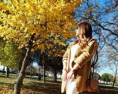 Adoro el otoño y esta luz que nos brinda. Ya casi a las puertas del invierno me gusta disfrutar de estas mañanas soleadas junto al follaje cambiante de los árboles. Es un escenario precioso y da una calidez a las fotos inigualable. Mientras tanto Bimba disfrutó de la mañana correteando por las hojas del parque, ...