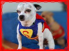 Superman Dog Sweater Costume