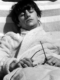 Ringo taking a snooze ✭